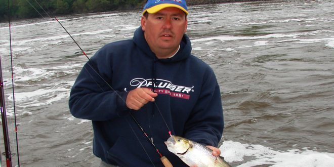 North Carolina Shad Fishing