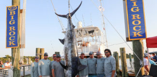 Hatteras Village Offshore Open - Carterican Sportfishing weighed in a 578.6 lb Blue Marlin.