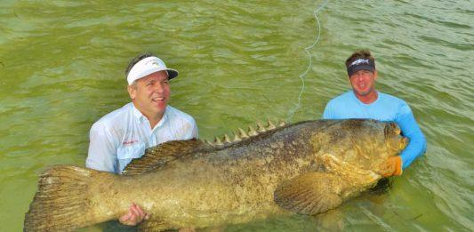Boca Grande Pass Goliath Grouper