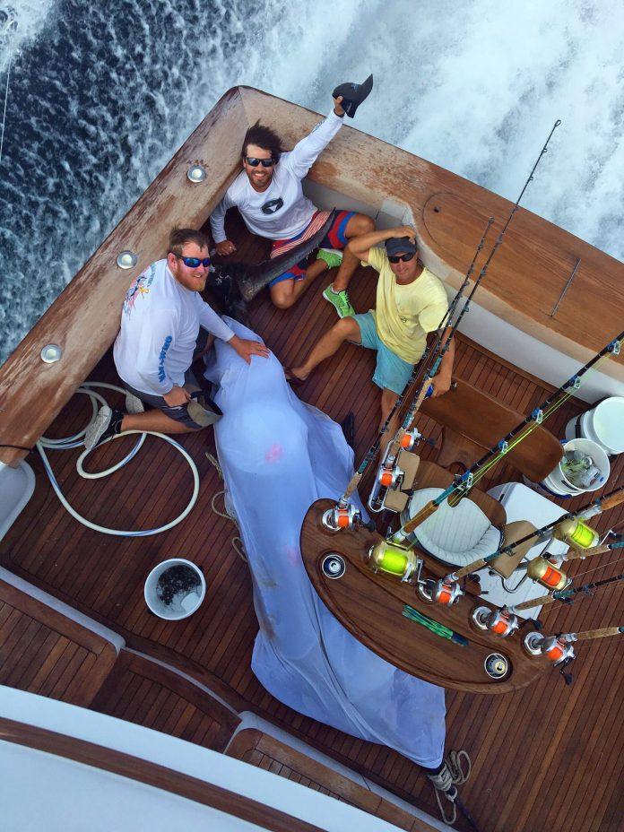 2018 Pirates Cove Billfish - Builders Choice