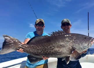Jeremy Wall (L) and Capt. Bonner Herring (R) with a 50 pound gag grouper.