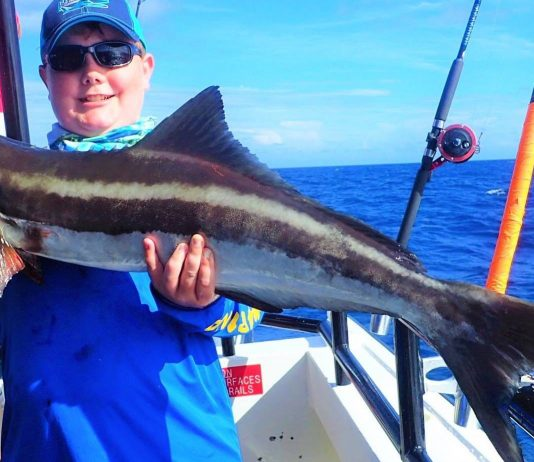 The Council chose to increase the commercial and recreational Cobia minimum size limit to 36 inches fork length.