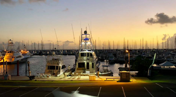 Puerto del Rey 2018 Billfish Tournament