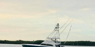 Pelican Yacht Club Billfish Tournament Day 2
