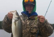 Roanoke River Striper - Neuse River Bait & Tackle