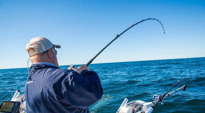 Downriggers - King Mackerel Fishing | PointClickFish com