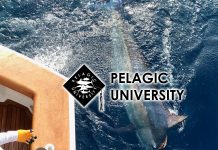 Pelagic University