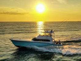 2020 Hatters Marlin Club Billfish Tournament
