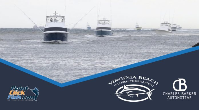 2020 Virginia Beach Billfish Tournament LIVE