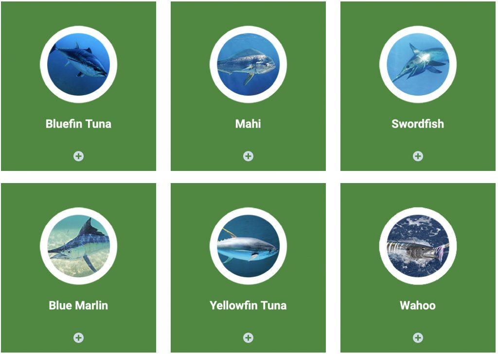 Recommended locations where fishing conditions are favorable, by species